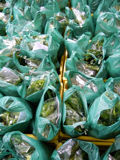 Vegetables ready for packing at Harvest of Hope in Philippi.