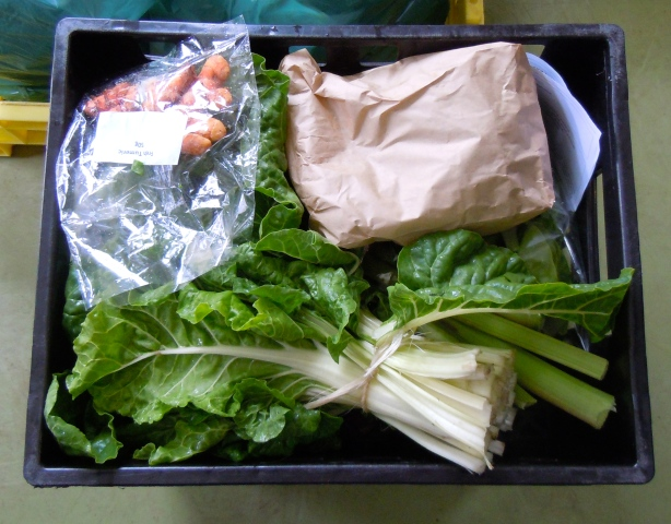 A vegetable box packed at Harvest of Hope's shed in Philippi.