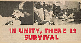 The Black Panther Party's Free Breakfasts for Children Programme (from http://www.bl.uk/learning/histcitizen/21cc/counterculture/liberation/blackpanther/blackpanther.html)