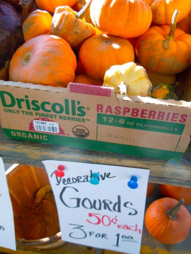 It's decorative gourd season at the Ann Arbor farmers' market.